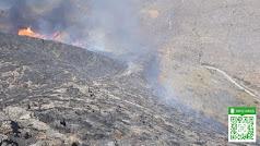 El fuego ya está controlado en Huércal de Almería. Foto del Plan Infoca.