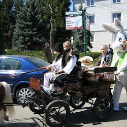 Un individ îmbrăcat în iepure alb-verde s-a plimbat printre cei prezenţi în Parcul Central din municipiul Suceava în timpul Concertului de toacă din prima zi de Paşte