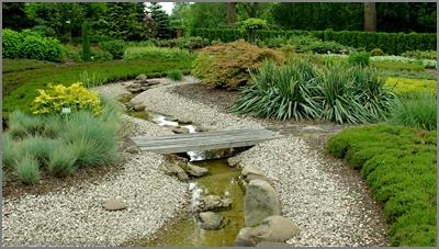 ogród, garden, strumyk, mostek