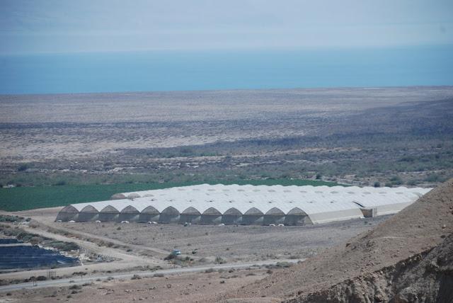 صور من الضفة الغربية والقدس بعيون كاميرا امواج الاندلس DSC_6335