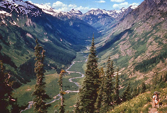 """Photo: The Glacier Peak Wilderness:  This 458,000 acre area has been the focal point of most of the controversy in the North Cascades. Formerly a Limited Area, the Forest Service proposed to reclassify into a Wilderness Area in 1957. However, the proposals were carefully drawn to exclude all of the commercially timbered valleys, leaving only rock and ice. Conservationists, labeling this proposal a """"Starfish"""" or """"Wilderness on the Rocks"""", mustered their forces, and by dint of great pressure, forced the Forest Service to include at least portions of some of these valleys in the wilderness. However, many beautifully scenic valleys still remain outside of the wilderness, just to the west, south, and east. It is continuing Forest Service logging in these areas - which are logically part of the same scenic and wilderness complex - which has given impetus and strength to the drive for a North Cascades NationaI Park.  38. View north of the Napeequa Valley, southeast portion of Glacier Peak Wilderness, from Little Giant Trail. Glacier Peak out of sight to the left."""