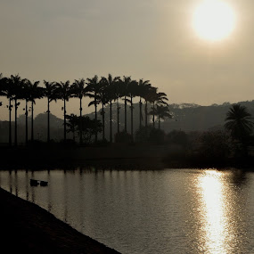 Lalbagh in a misty sunrise. by Bhanu Prakash - City,  Street & Park  City Parks ( bangalore, lalbagh )