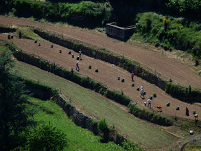 Photo: les cultures en terrasses