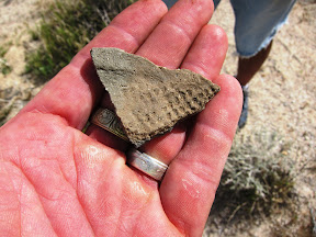 Pottery fragment in Inner Pasture Anza Borrego