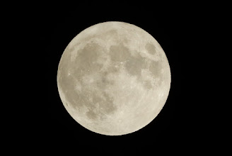 Photo: 今夜は満月だよ~っ!