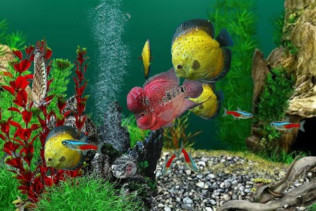 AquaLife 3D  Apk Download For Android and Iphone 4