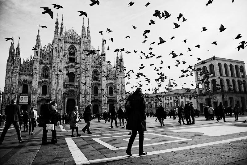 Milano di nicolanigri