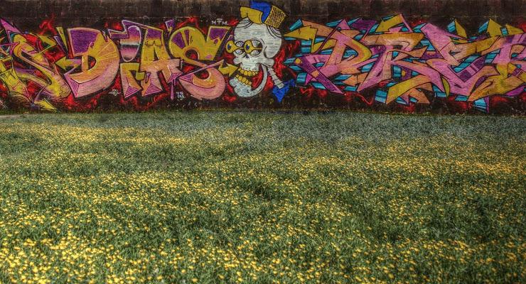 Urban spring di Giovanna_Tamponi