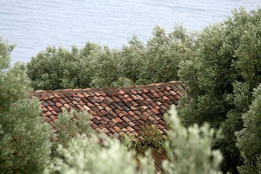 Оливковая роща, черепица, море