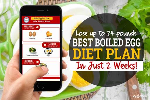 Best Boiled Egg Diet Plan 1.3 screenshots 4