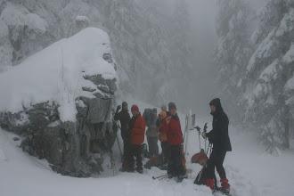 Photo: Zwercheck, diesmal im Nebel
