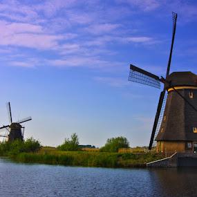 Dutch beauty by Trippie Visser - Landscapes Travel