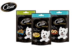 Cesar® Mini-Bones und Mini-Joys