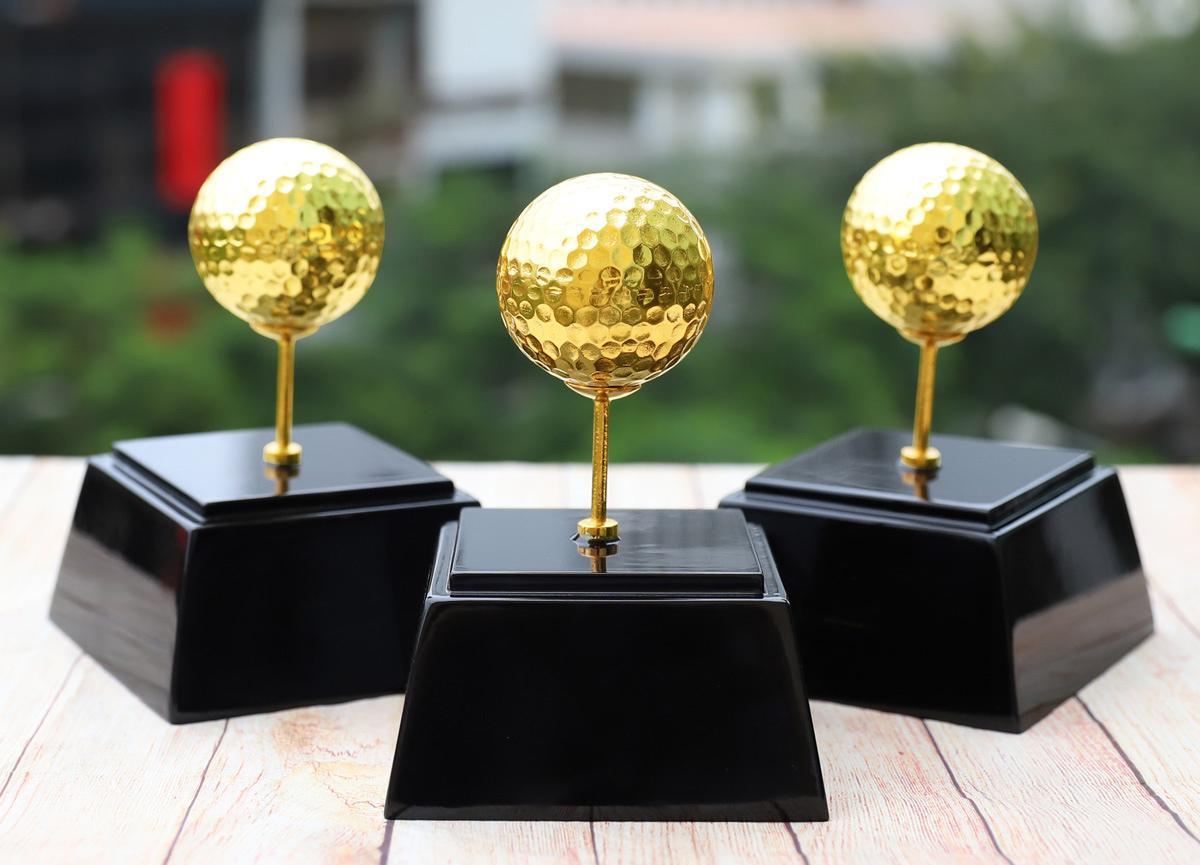 Chiêm ngưỡng những mẫu quà tặng cao cấp cho giải Golf tại Việt Nam - Ảnh 5