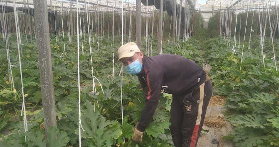 83 personas en exclusión social logran empleo en la pandemia con La Caixa
