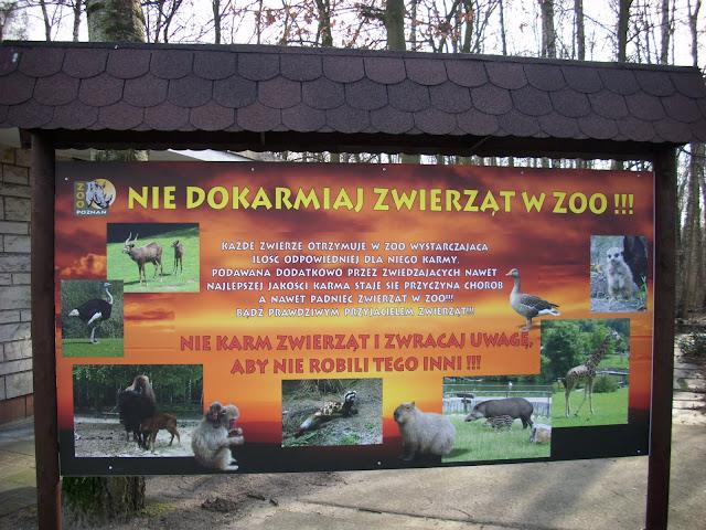 Nie dokarmiaj zwierząt w zoo!