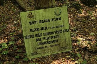 Photo: A táblán jelzett mangános pala miatt a geológusok annak idején alaposan megkutatták a területet, még Mn-kutató tárót is hajtottak a völgyben
