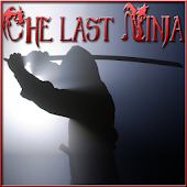 The last Ninja Assassinator 2