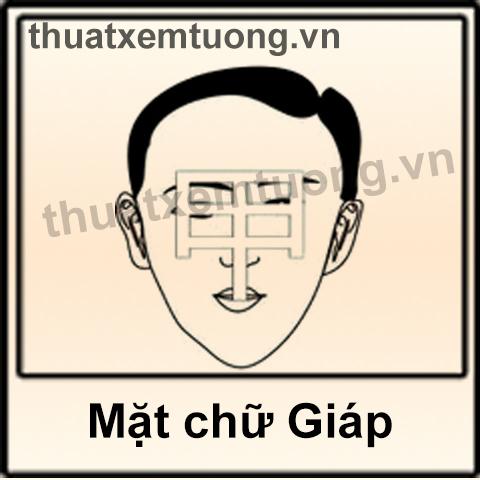 Khuôn mặt chữ giáp chính là khuôn mặt lý tưởng trong tướng học