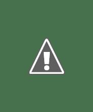 Photo: Luna y Zeus-2010