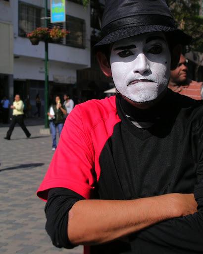 Wi-wi, mimo en el Bulevar de Sabana Grande Caracas Venezuela