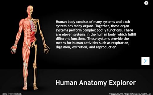Humananatomy Circulatory Apps On Google Play