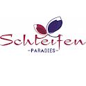 Schleifenparadies icon