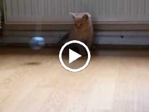 Video: Pontus playing some more :-)