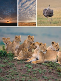 Popular Photography- screenshot thumbnail