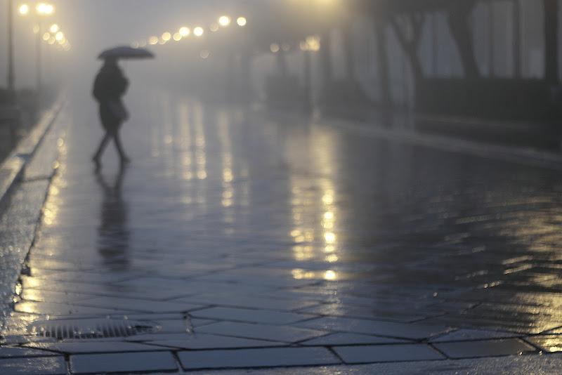 luci e riflessi nella nebbia di rino_savastano