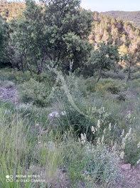 terrain à Taradeau (83)