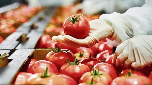 ¿Qué hay que hacer en el sector hortofrutícola para ser más competitivos?