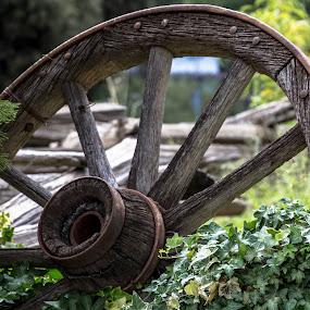 Wagon Wheel Oak Glen California by Leah N - Artistic Objects Other Objects (  )