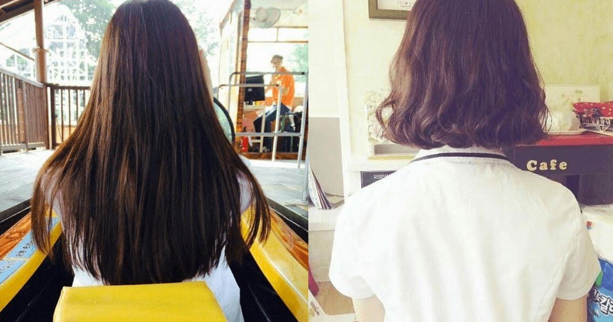 Prime Netizens Compare Long Hair Vs Short Hair On Women Koreaboo Schematic Wiring Diagrams Amerangerunnerswayorg