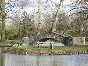 Photo: Crane standing on an island at Eastwood Park in Dayton, Ohio.