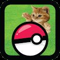 Chats Chaton Pocket GO! icon