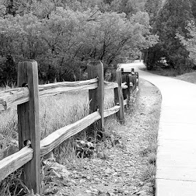 Garden of the Gods Fence by Rob King - Novices Only Landscapes
