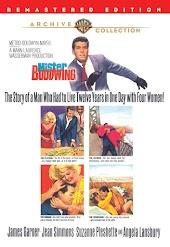 Mister Buddwing (1966)