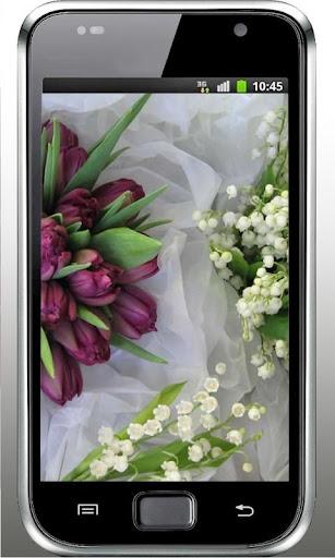Spring Lilies n Tulips HD LWP