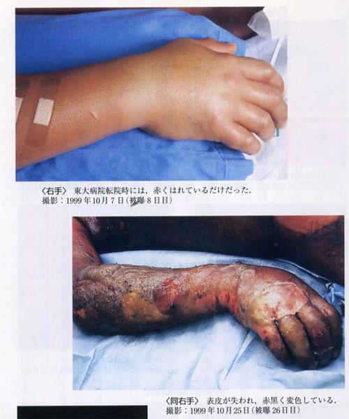 Bioshockシリーズ Part 25 [無断転載禁止]©2ch.netYouTube動画>2本 ->画像>459枚