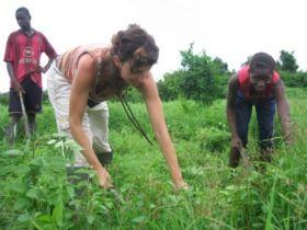 cooperación y desarrollo rural agrícola