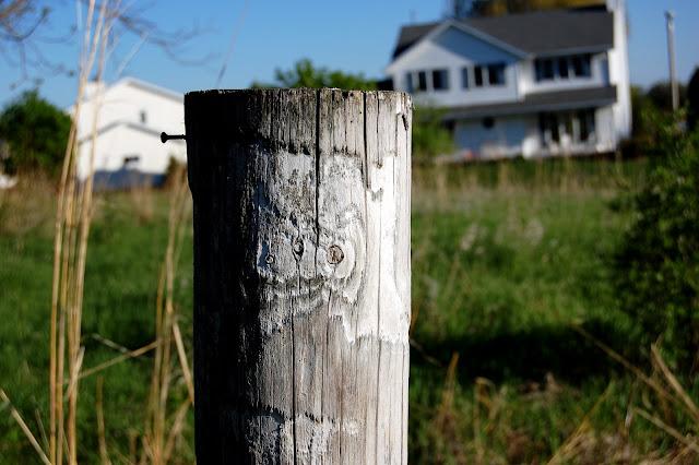 the rorschach post