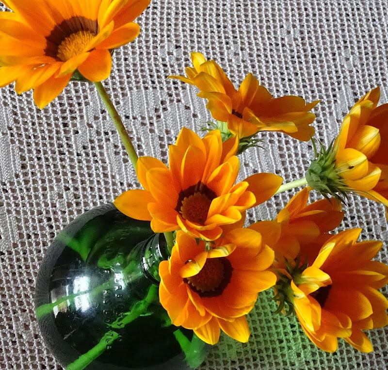 I tuoi fiori preferiti di francesco_abate