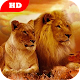 Lion Wallpaper HD for PC-Windows 7,8,10 and Mac