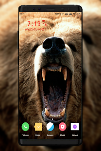 Bear Wallpaper - náhled