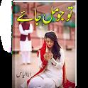 Tu Jo Mil Jaey | Urdu Novel | icon