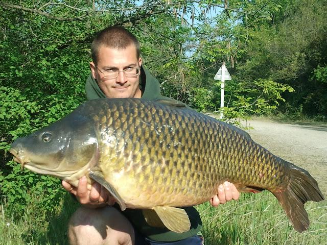 Carpe 21,5 kg prise dans le Rhône