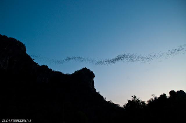 Гора миллиона летучих мышей в Хуа Хине