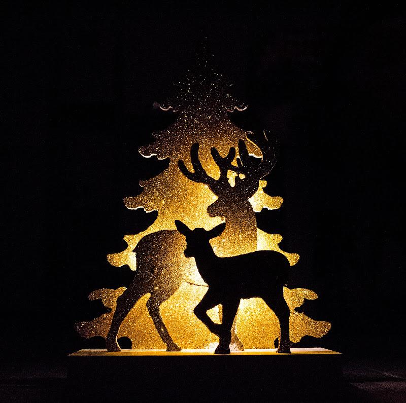 Light Tree di markspro