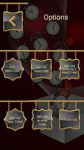 Alarm Ringtones - náhled